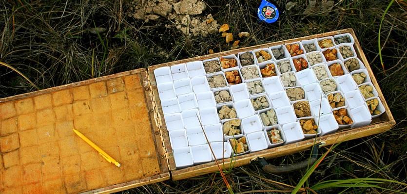 Echantillons-de-sols-de-savanes2-©-Claessens-O