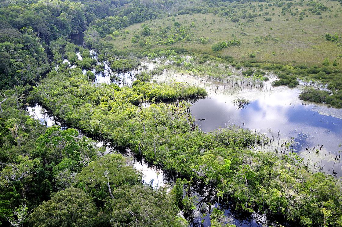 WEB-mosaïque-de-forêt-marais-et-savanes-©-CNES-CSG
