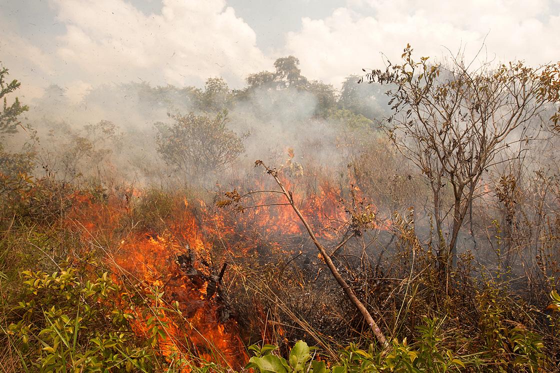 Passage de feu expérimental sur une parcelle de savane des Pripris de Yiyi © Blanchard F