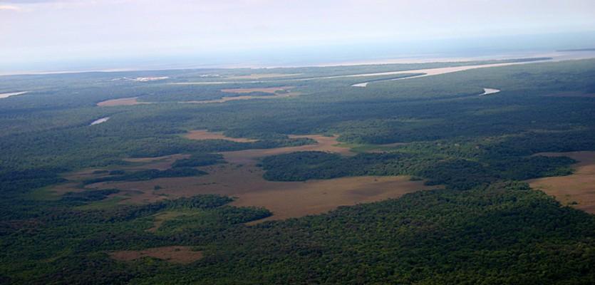 WEB-recadré-savanes-littorales-vues-du-ciel-entre-forêt-et-océan-©-Stier-A---GEPOG