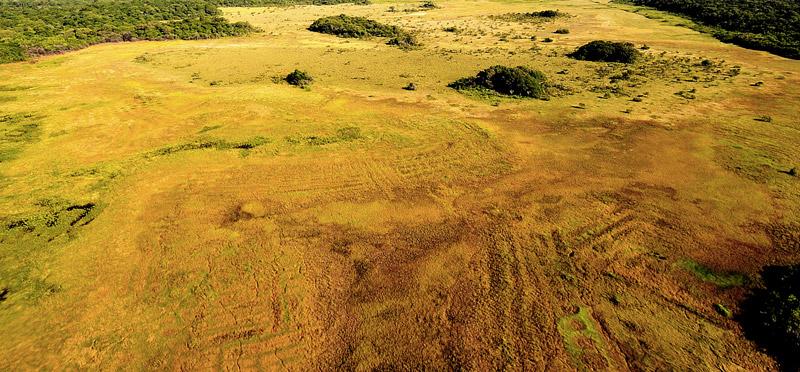 champs-sureleves-dans-les-savanes-du-centre-spatial-©-CNES-CSG