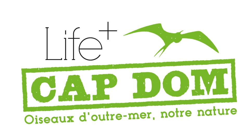 logo life+capdom