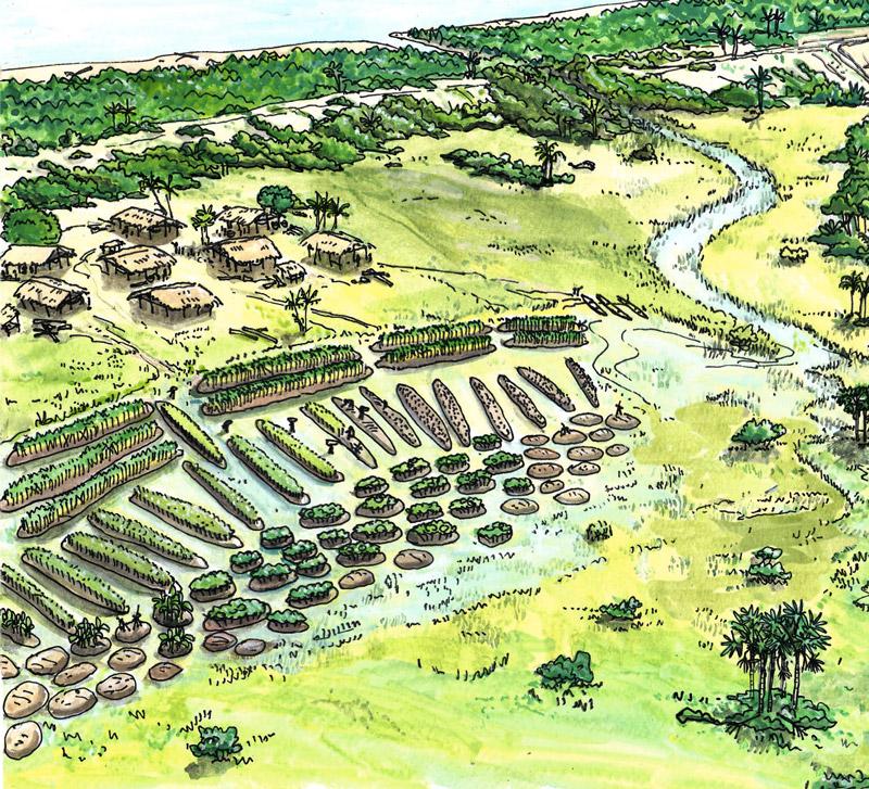 savanes-pendant-la-periode-precolombienne-©-jean-pierre-penez
